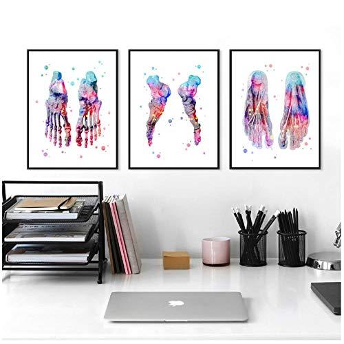 zhaoyangeng Aquarell Füße Druckset | Leinwand, Fußknochenmalerei Poster, Wanddekoration, Klinischer Druck, Arztpraxis - 50X70Cmx3 Ungerahmt