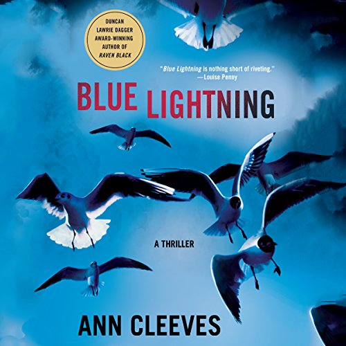 Blue Lightning: A Thriller audiobook cover art