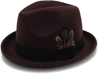 HaiNing Zheng 6 Colour Fedora Hat For Women Men Panama Hat With Feather Autumn Female
