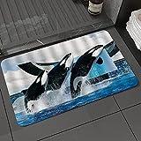 Alfombra de baño y Alfombra antideslizanteBallena Animales Marinos Orcinus Orca Marine Park Saltar AguaAlfombrilla de Ducha de Microfibra (50x80cm)