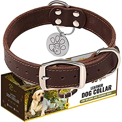"""Leather Dog Collar for Small, Medium and Large Dogs - Heavy Duty Wide Dog Collars with Durable Metal Hardware & Double D-Ring - Unique Name Tag Included (M: 1,2"""" width / 13""""- 20"""" length, Brown)"""