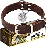 Leather Dog Collar for Medium Dogs - Heavy Duty Wide Dog Collars with Durable Metal Hardware & Double D-Ring - Unique Name Tag Included (M: 1,2' Width / 13'- 20' Length, Brown)