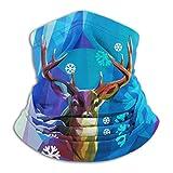 Linger In Reno en la Nieve Cuello Polaina Calentador de Cuello Decoraciones faciales Bandana Sombreros