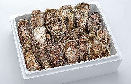 産地直送 広島産殻付きかき 100個 宮島近海で獲れた大粒かき クール便 カキ 牡蠣 鍋 �潟Aミスイ