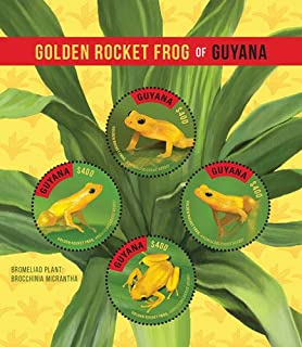 2016 Golden Rocket Frog of Guyana, Collectible Sheet of 4 Stamps, Mint Never Hinged