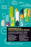 Panorama de la administración en México: Estrategias, prácticas y retos (English Edition)