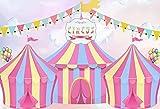 Fondo de fotografía Primera Fiesta de cumpleaños bebé Circo Tema Carnaval Carpa Postre Banner Foto Accesorios de Fondo A14 10x7ft / 3x2.2m