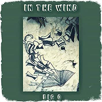 In the Wind (Single)