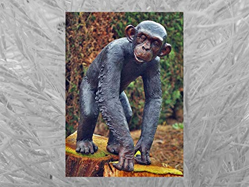 IDYL Escultura de bronce de chimpancé   77 x 38 x 55 cm   Figura de animal de bronce hecha a mano   Escultura de jardín o decoración   Artesanía de alta calidad   Resistente a la intemperie