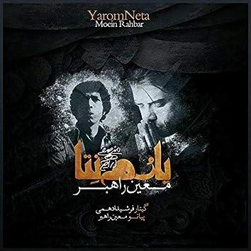 Yarom Neta