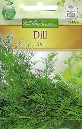 Chrestensen Dill 'Tetra'