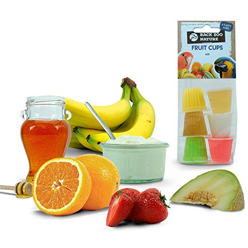 Surtido Fruit Cups - Jelly Loro Tratamiento 6 Pack