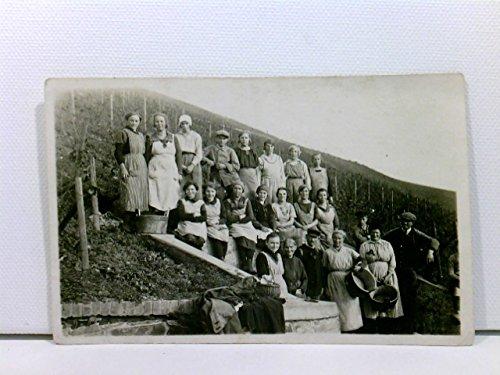 AK Martinsthal / Rheingau, Erntehelfer im Weinberg, Weinlese, Gruppenfoto ca. 1910; ungelaufen