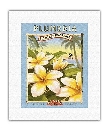 """Plumeria - Graines """"Aloha"""" - Entreprise de semences Big Island - Parfum Big Island - Sachet de graines de Kerne Erickson - Impression d'Art sur Toile (roulée) 28 x 36 cm"""