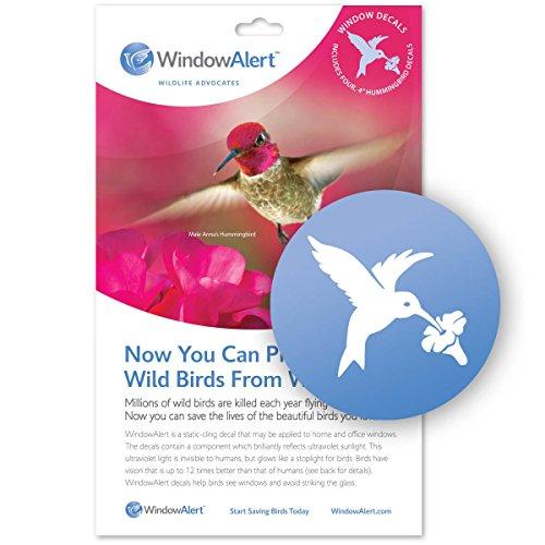 Alerte fenêtre Stickers colibri x4