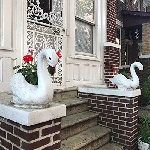 Pretty Goslings