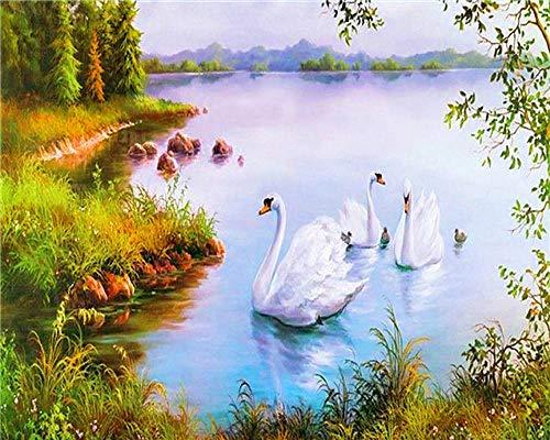 FBDBGRF Dipingi per Numero Swan Che Gioca nell'Acqua Kit Fai da Te, Tela (40 Cm X 50 Cm) Pittura A Olio Acrilica per Disegnare Principianti E Bambini (Senza Cornice)