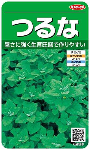 サカタのタネ 実咲野菜3079 つるな 00923079