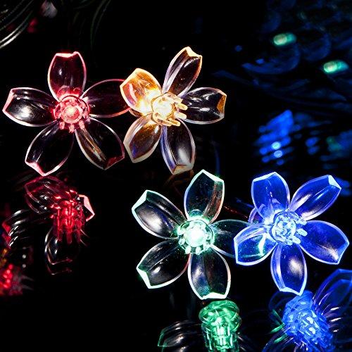 SPV Lights Guirlande lumineuse pour jardin 50 LED à énergie solaire en forme de fleurs Multicolore