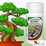 Zoom IMG-1 fertilizzante bonsai per crescita forte