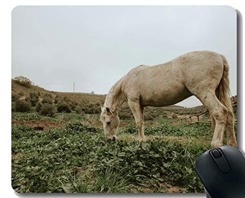 Yanteng Customized Rubber Mousepad, Animal de fotografía Animal con Borde Cosido