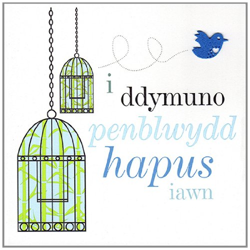 Claire Giles Sherbet Sundaes Welsh Penblwydd Hapus Bird Cage Birthday Card