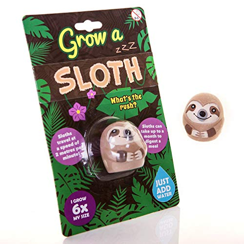 Boxer Gifts Grow a Sloth Toy | Just Add Water | Fun for Chil