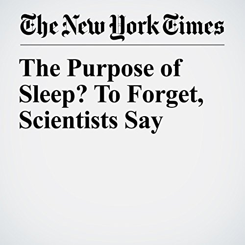 The Purpose of Sleep? To Forget, Scientists Say copertina