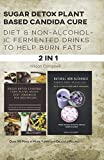 SUGAR DETOX PLANT BASED CANDIDA CURE DIET & NON-ALCOHOLIC FERMENTED DRINKS TO HELP BURN FATS: Over 30 Make at Home Yummy and Delicious Recipes