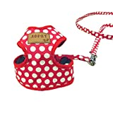 Collar para perro arnés del perro softgesc Pecho Vajilla Vajilla infantil Cachorro Vajilla Power Vajilla Sillín Vajilla s/m/l negro/rojo