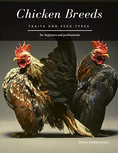 Chicken Breeds: Traits and Feed Types