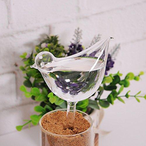 Regadera Riego Automático Forma Pájaro de Vidrio para Planta Flores Jardín