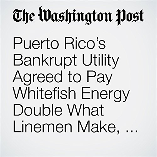 Puerto Rico's Bankrupt Utility Agreed to Pay Whitefish Energy Double What Linemen Make, Documents Show copertina