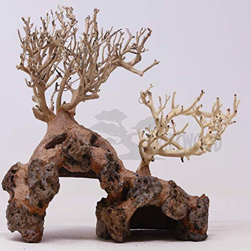 Bonsai Driftwood Aquarium Tree Dry Coconut GE Random Pick (10in H x 10in L) Natural, Handcrafted Fish Tank Decoration   Helps Balance Water pH Levels, Stabilizes Environments   Easy to Install