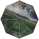 Parapluie Automatique Herbe Pluie Déclin Nuages Légers Voyage Pratique Coupe-Vent Imperméable Pliant Ouverture Automatique Fermer