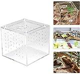 HEEPDD Caja de reproducción de Reptiles acrílicos, Transparente Almacenamiento de Alimentos Vivos Caja de visualización de Insectos para grillos de araña Caracoles Cangrejos ermitaños Tarantulas