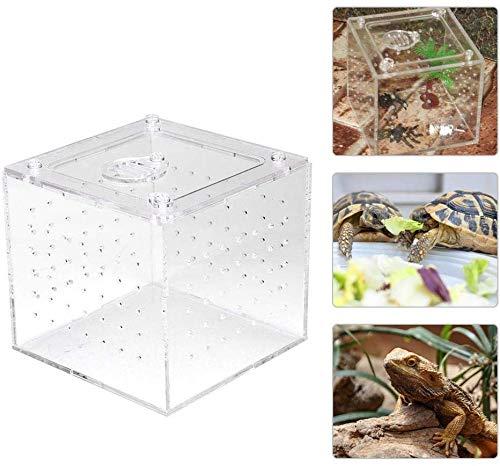 HEEPDD Acrylic Reptile Breeding Box Transparente Aufbewahrungsbox für Lebendfutter Insekten für Spinnengrillen Schnecken Einsiedlerkrebse Vogelspinnen Geckos 3.9x3.9x3.5inch