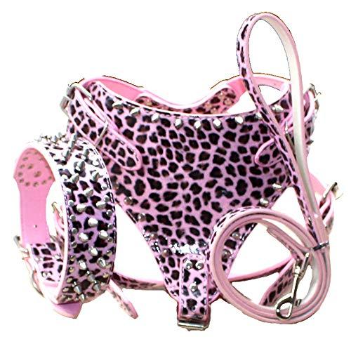haoyueer Juego de 3 collares de piel con tachuelas para perro, arneses y correas a juego para raza mediana y grande, Pit Bull Bull, Mastín, Boxer, Bull Terrier … (M, leopardo rosa)