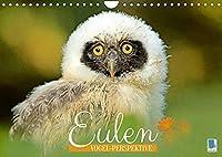 Eulen: Vogel-Perspektive (Wandkalender 2022 DIN A4 quer): Eule, Uhu und Kauz: Faszinierende und anmutige Jaeger (Monatskalender, 14 Seiten )