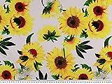 ab 1m: Baumwoll-Jersey, Sonnenblumen. weiß-gelb, 155cm