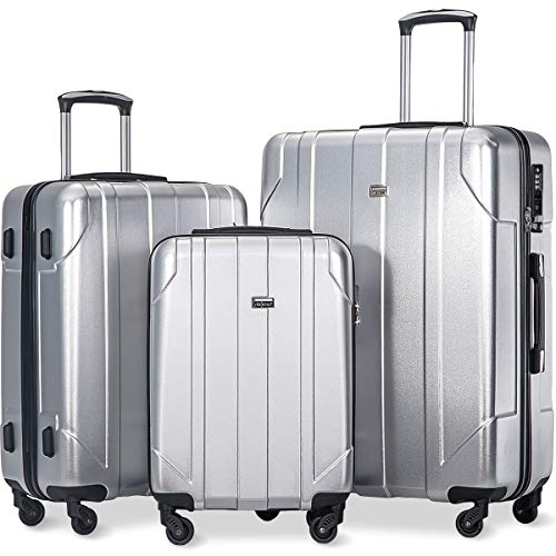 Merax 3 Pcs Luggage Set with Built-in TSA Lock, Eco-friendly P.E.T Light Weight Spinner Suitcase Set (Silver)