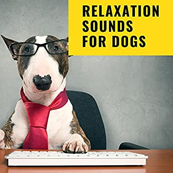 Relaxation Sounds For Dogs