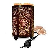 Unique Forêt Lampe de Sel Himalaya en Cristal Naturel, purificateur d'air naturel(15.5x10cm) Interrupteur tactile de haute technologie, Paquet cadeau Cadeau parfait,Salt lamp