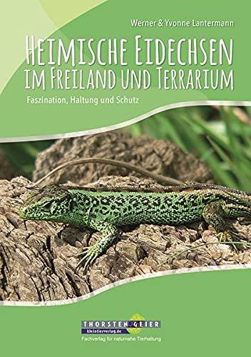 Heimische Eidechsen im Freiland und Terrarium: Faszination, Haltung und Schutz