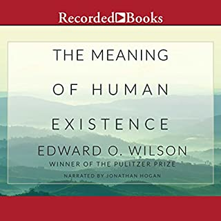 The Meaning of Human Existence cover art