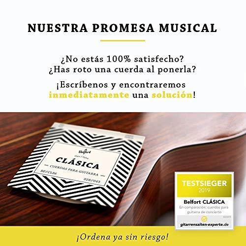 Cuerdas de nailon de primera calidad para guitarra clásica, española, flamenca y guitarra acústica (lote de 6 cuerdas) BONUS: 4 púas + Escuela de Guitarra (ebook)