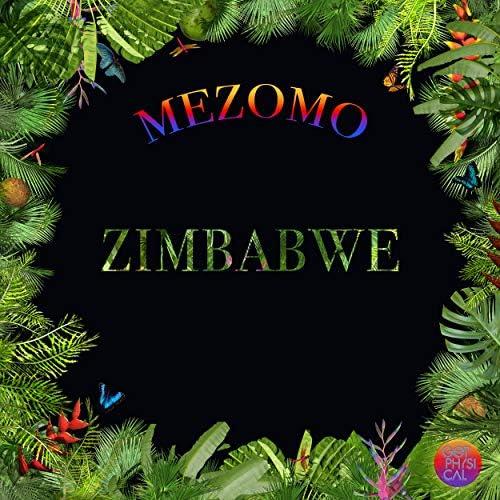 Mezomo