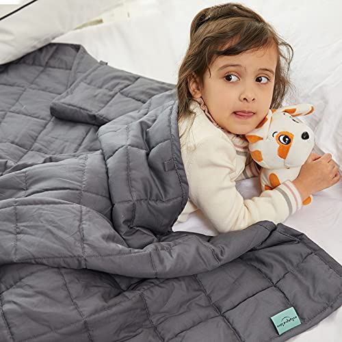 Weighted Idea Cooling Weighted Blanket...