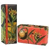 Royal Botanic Gardens KEW Handcreme & Sheabutter Seife Geschenkset - Bergamotte & Ingwer