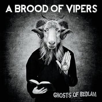 Ghosts of Bedlam